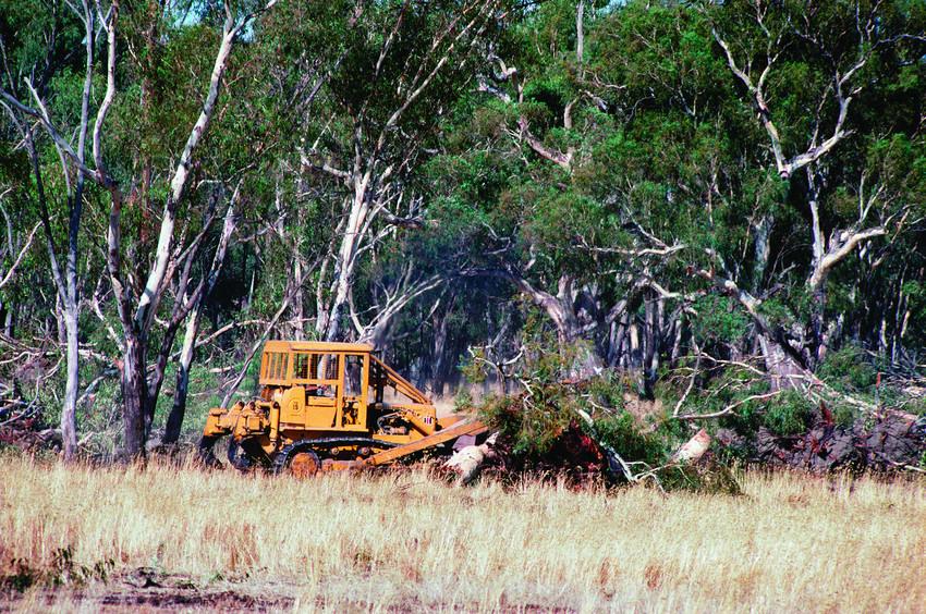 Australia Map Vegetation 200 Years Ago.10 Facts About Deforestation In Australia Wilderness Society